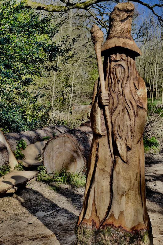 A carving of the Stinsford Wizard carved by Neith Chainsaw Carving Artists
